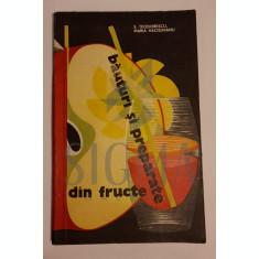 S. Teodorescu - Maria Hacighianu - Bauturi si preparate din fructe
