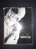 IONEL JIANU - CONSTANTIN BRANCUSI VIATA SI OPERA. ALBUM (1983, editie cartonata)