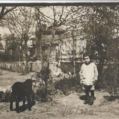 Fotografie copil cu miel poza veche