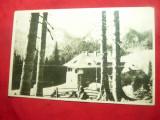 Ilustrata Cabana Pestera - Muntii Bucegi anii '50