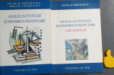 Analiza activitatii economice-financiare Nicolae Mihailescu