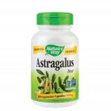 Astragalus 470mg, 100cps, Nature's Way