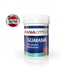 Panactive Guarana Blatt 80 cps
