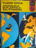 Animalele și plantele călătoresc