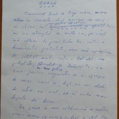 Manuscris olograf Geo Bogza , Barza , 3 pagini , 1980