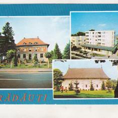 Bnk cp Radauti - Vedere - circulata - marca fixa, Printata