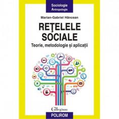 Retelele sociale. Teorie, metodologie - Marian-Gabriel Hancean