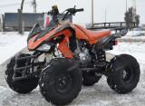 NOU ATV Mega Raptor 200cc import Germania cadou casca
