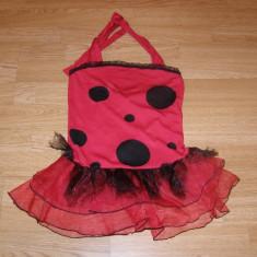 costum carnaval serbare buburuza pentru copii de 6-7 ani