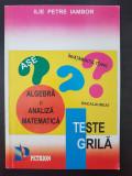 TESTE GRILA ALGEBRA SI ANALIZA MATEMATICA - Iambor