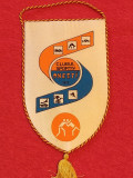 Fanion sectia LUPTE - Clubul Sportiv ONESTI