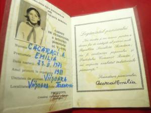 Organizatia Pionieri RSR - Carnet de Evidentiere a activitatii pionierului 1981