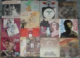Vinyl povesti,basme Ion Creanga,Petre Ispirescu,Pinocchio,Andersen,Sadoveanu, VINIL