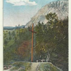 cp Baile Herculane : Crucea Gisela - circulata 1924, timbre