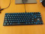 Tastatura Mecanica thin HAVIT HV-KB390L, 87-keys, s. Kailh PG1350 Blue (Clicky)