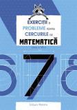 Cumpara ieftin Exerciții si probleme pentru cercurile de matematică clasa a VII-a