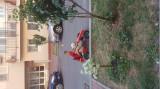 Cart cu pedale