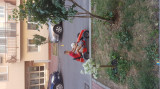 Cart cu pedale, Berg Toys
