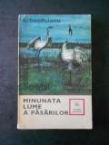 I. BORDEIANU - MINUNATA LUME A PASARILOR