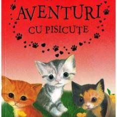 Aventuri cu pisicute - Holly Webb