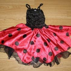 costum carnaval serbare buburuza pentru copii de 1-2 ani