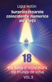 Cumpara ieftin Surprinzătoarele coincidențe numerice ale vieții. Big Bang și înțepătura pe frunza de lotus (Vol.3)