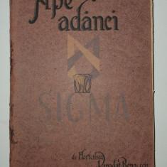 HORTENSIA PAPADAT BENGESCU ( DEBUT EDITORIAL !) - APE ADANCI , 1919