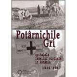 Potarnichile gri. Spitalele Femeilor Scotiene in Romania (1916-1917) - Costel Coroban
