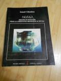 IONEL CANDEA--BRAILA - ORIGINI SI EVOLUTIE LA JUM. SEC. XVI