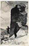 Carte poștală Cetatea Balvanyos Transilvania