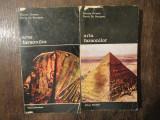 Arta faraonilor - Etienne Drioton, Pierre Du Bourguet (2 vol.)