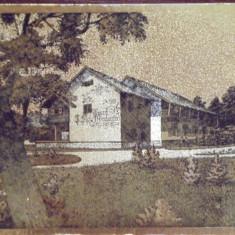 RPR - SIBIU - HANUL  DUMBRAVA - VEDERE CU FOITA AURITA, NECIRCULATA .