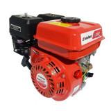 Motor benzina, 6.5 CP, 4 timpi, 196 cc