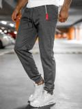 Pantaloni de trening gri Bolf JX1059