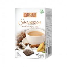 Ceai negru Black Tea Spicy Chai Evolet Sensation piramida 20 plicuri
