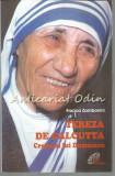 Cumpara ieftin Tereza De Calcutta. Creionul Lui Dumnezeu - Franca Zambonini