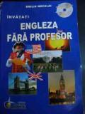 Engleza Fara Profesor- Curs Practic - Emilia Neculai ,545443