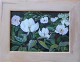"Tablou – pictură ""Paeonias"" de Teresa Zwolinska-Brzeski"