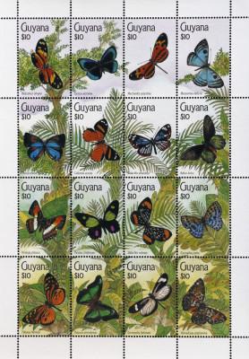 Guyana - FLUTURI, coala mica, NEOBLITERATA -CW 322 foto