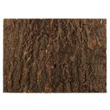 Fundal pentru terariu - scoarţă 58,5 x 41 cm