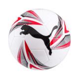 Big Cat Ball, Puma
