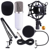Microfon profesional de Studio Condenser BM-700,cu stand inclus pentru inregistrare, WVNGR