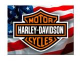 Cumpara ieftin Magnet frigider - Harley Davidson USA