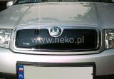 Cumpara ieftin Masca radiator SKODA FABIA an fabr. 2000- (marca HEKO)