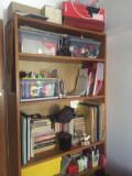 Biblioteca  compusa din 2 corpuri identice
