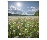 Cumpara ieftin Jaluzea tip rulou Dandelion Field 110x180 cm - Blindecor, Albastru