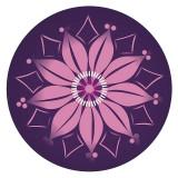 Abtibilduri roti, 2 buc / set, Nikidom Roller Bloom