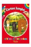 Citim si coloram - Cartea Junglei   Rudyard Kipling