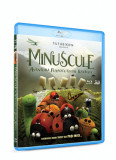 Minuscule: Aventura furnicutelor ratacite / Minuscule: Valley of the Lost Ants - BD 2D+3D Mania Film