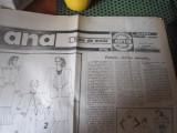 nr 1 an 1 an 1990 ana h 26